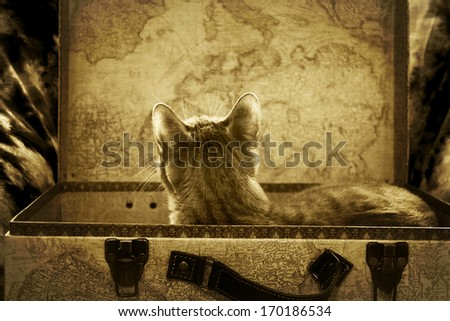 Tomorrow the World - stock photo