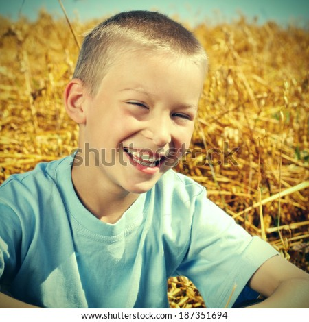 Toned photo of Happy Young Boy in the Wheat Field - stock photo