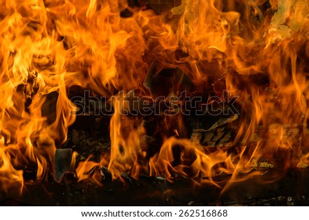Tongues of flame on burning wood - stock photo