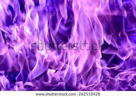 Tongues of purple flame - stock photo