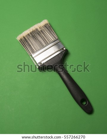 Tool used for applying color.Paint Brush/Bristles and handle used for redecorating