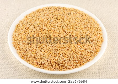 Toor dal, famous Indian legume also called yellow Pigeon peas in white plate..Selective focus. - stock photo