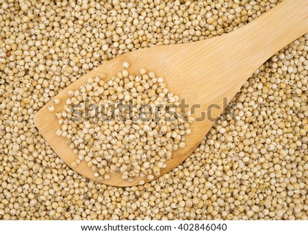 Top close view of a small wood spoon filled with whole grain organic sorghum atop more seeds.
