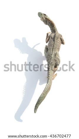 top view allosaurus toy on a white background with shadow
