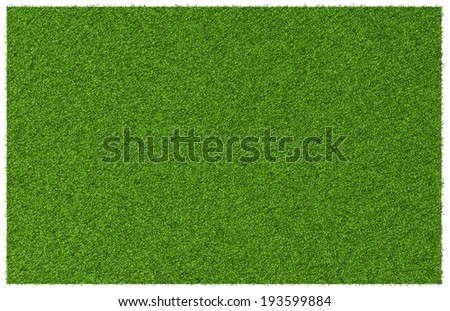 Top view angle of green grass meadow - stock photo