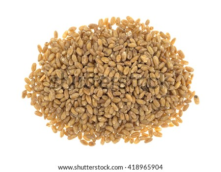 Top view of a portion of red winter wheat berries isolated on a white background. - stock photo