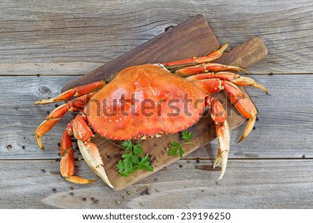 Top view of a steamed Dungeness crab on wooden server board with herbs and spices ready to eat.  - stock photo