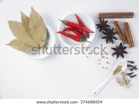 top view of assorted spices on the white background - stock photo