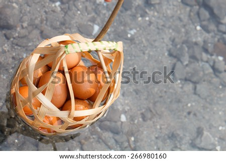 Top view of Boiled eggs in hot spring at Jaeson National Park in Lampang, Thailand - stock photo