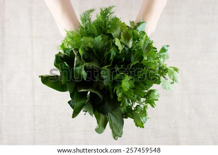 Top view of bunch fresh herbs in the hands over sackcloth background - stock photo