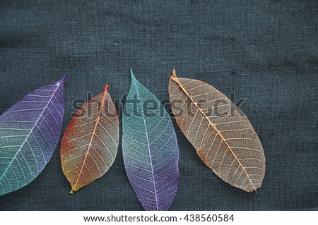 Top view of colorful dried leaves on gray fabric background - stock photo