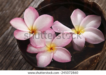 top view of frangipani flower and coconut shell - stock photo