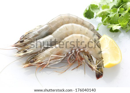 Top view of Fresh Gulf Shrimps  - stock photo