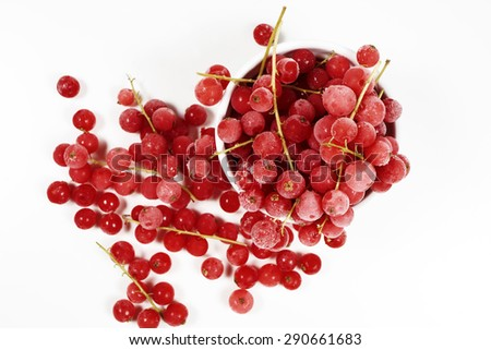 Top view of frozen currants with stems covered with ice crystals in a white porcelain bowl on white background