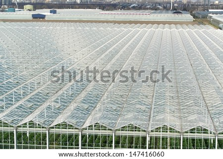 Top view of greenhouses, with lots of glass