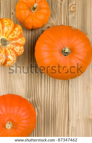 Top view of pumpkins on a wooden background - stock photo