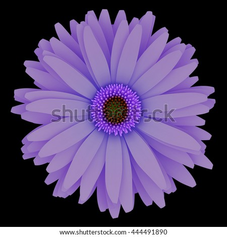 top view of purple flower isolated on black background. 3d illustration - stock photo