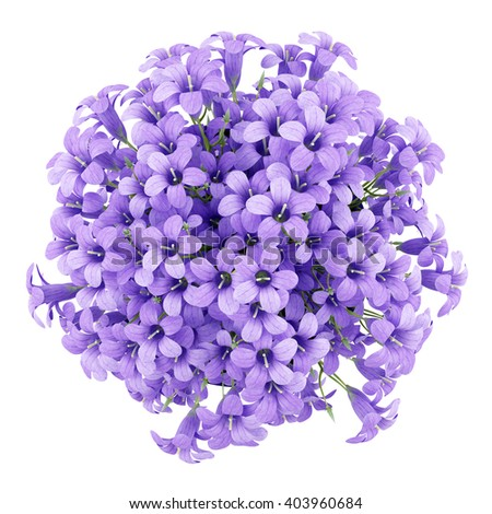 top view of purple flowers in pot isolated on white background. 3d illustration - stock photo