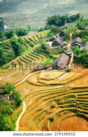 Top view of rice terraces and roofs of village houses among green trees at highlands of Sapa District, Lao Cai Province, Vietnam. Sa Pa is a popular tourist destination of Asia.