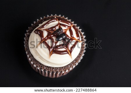 Top view of spider on web chocolate Halloween cupcakes - stock photo