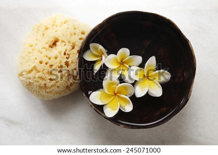 top view of sponge and bowl of flower - stock photo