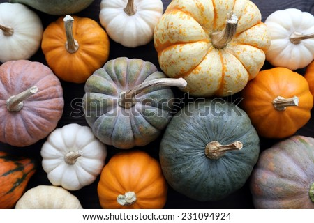 Top view of squash and pumpkins on wooden background. - stock photo