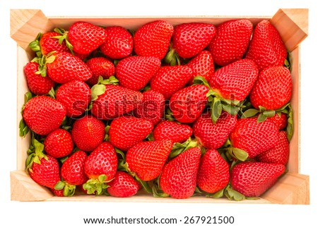 Top view of tasty spanish strawberries freshly collected on a wooden box isolated on white background - stock photo