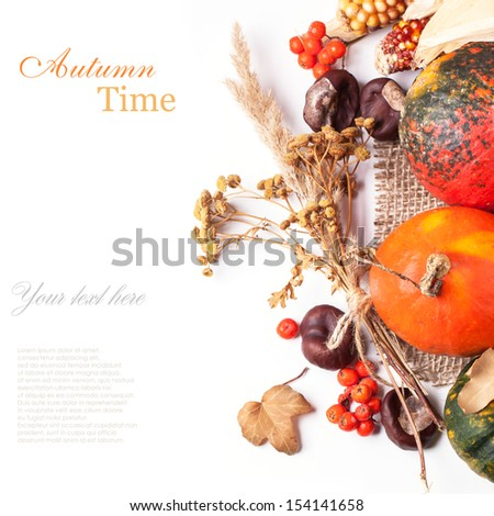 Top view on autumn mini pumpkins, berries, chestnuts and dry flowers over white with sample text - stock photo
