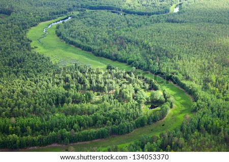 Top view on creek in forest during summer day - stock photo