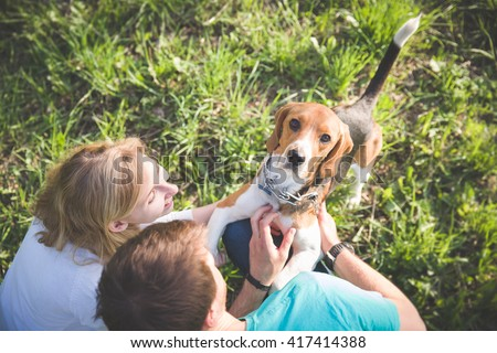 Top view on family with a dog. Woman and man with their nice dog in the park. summer walk with a dog. Beagle breed dog sitting in rack on a tight leash on green grass. - stock photo