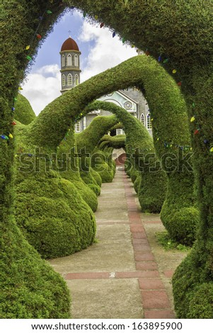 Topiaries of cypress decorated with christmas lights. - stock photo