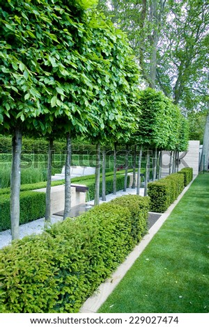 topiary trees and garden fences at Chelsea Garden Show - stock photo