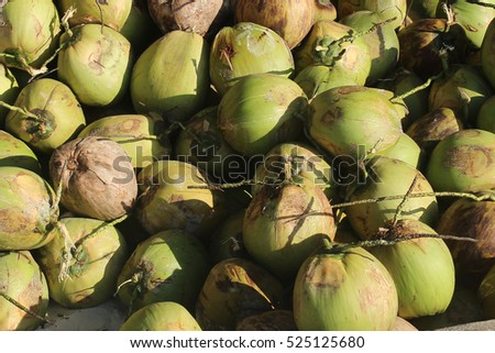 Topical green coconuts. Coconut water. Palawan Philippines