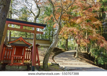 Torii and red maple tree in the famous and historical TodaiJi of Nara Park at Nara, Japan
