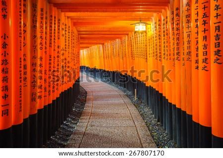 Torii gates in Fushimi Inari Shrine, Kyoto, Japan - stock photo