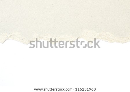 torn brown  paper isolated on white background - stock photo