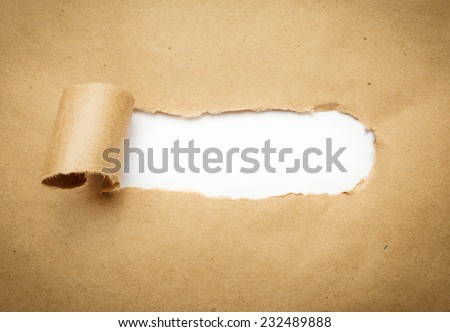 Torn brown paper with blank white space. - stock photo