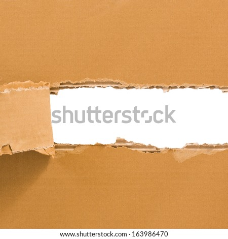 Torn cardboard sheet isolated on white with place for text. Square format. - stock photo