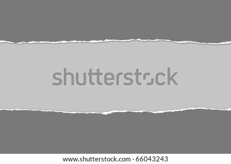 Torn gray Paper with space for text on gray background