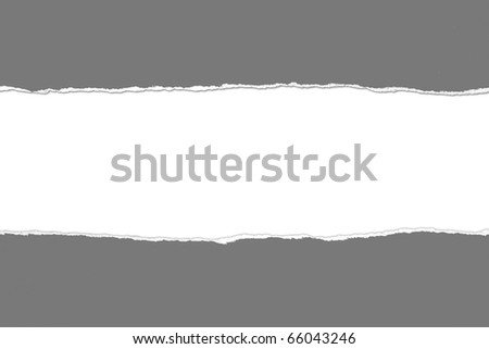 Torn gray Paper with space for text on white background