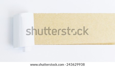Torn Paper with space for text with vintage brown background - stock photo