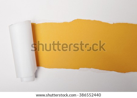 Torn paper with space for your message