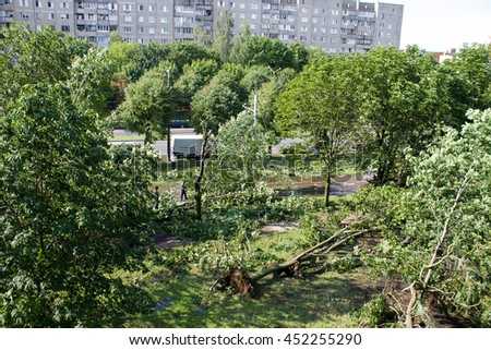 Tornado in the city of Minsk, Republic of Belarus 13.07.2016, consequences of natural disaster of destruction of inhabited constructions more than 100 trees are also tumbled down - stock photo