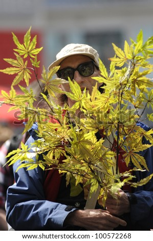 TORONTO - APRIL 20:   A marijuana  legalization  activist with a marijuana plant during the annual marijuana 420 event at Yonge & Dundas Square  on April 20  2012 in Toronto, Canada. - stock photo