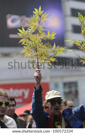 TORONTO - APRIL 20:  An old man waiving a  marijuana  plant during the annual marijuana 420 event at Yonge & Dundas Square  on April 20  2012 in Toronto, Canada. - stock photo