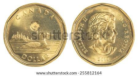TORONTO, CANADA - FEBRUARY 20, 2015: 1 canadian dollar coin - stock photo