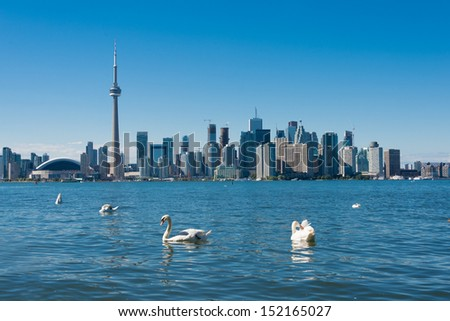 Toronto skyline with swans (Building signs are removed)