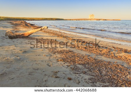 Torre Guaceto.BRINDISI (Apulia)-ITALY-Mediterranean maquis: a nature sanctuary between the land and the sea.In the background the watchtower . - stock photo