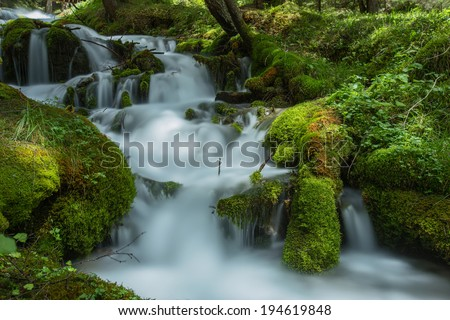 Torrent in the Pradidali Valley.  Vegetation of moss.  The Dolomites, region Trentino, Italy - stock photo