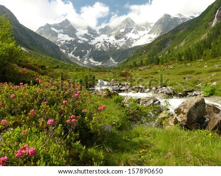 Torrent in the valley from the glacier - stock photo